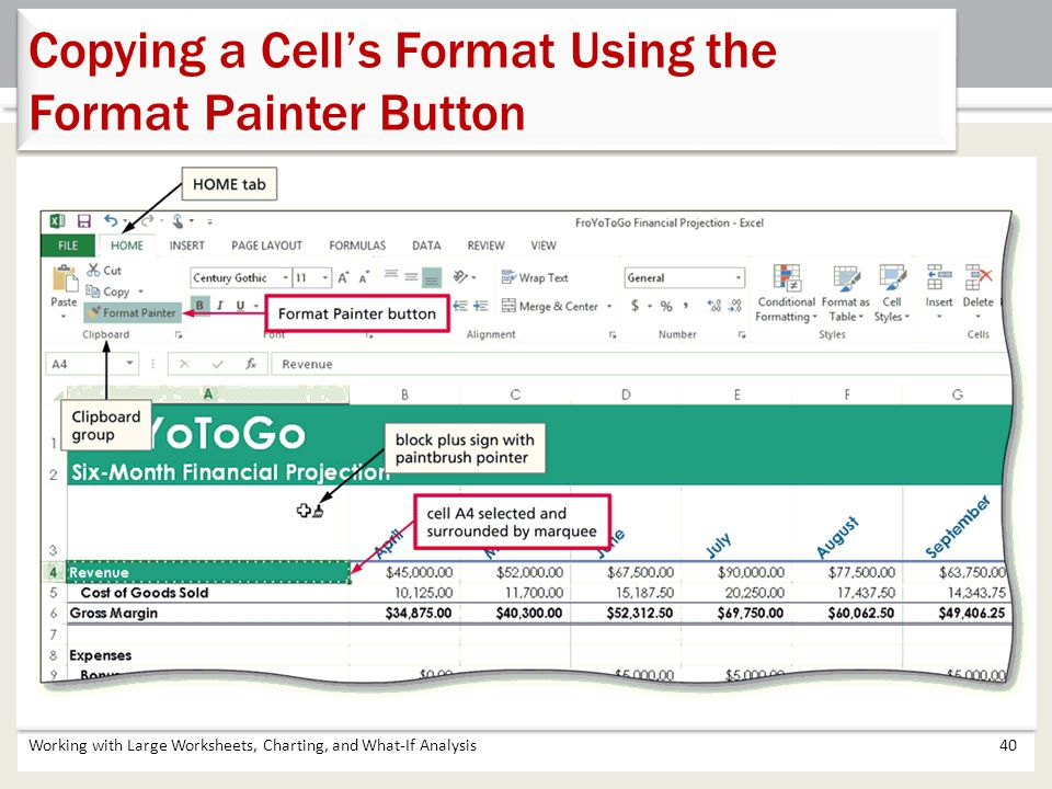 Copying a Cell's Format Using the Format Painter Button