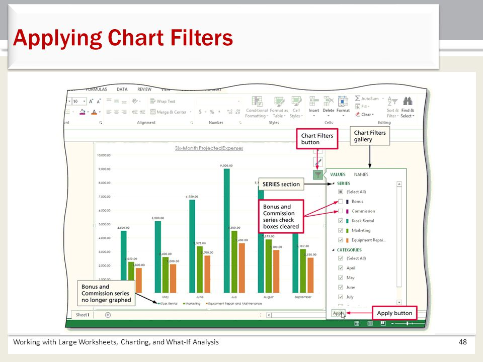 Applying Chart Filters