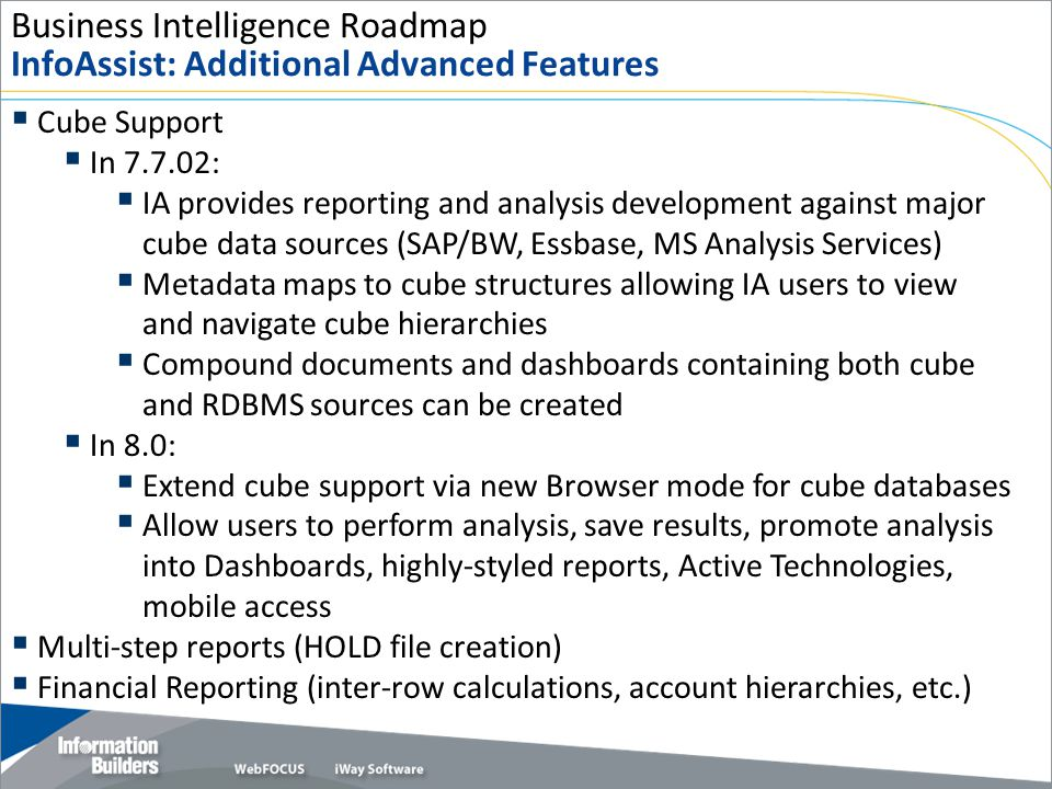 Business Intelligence Roadmap InfoAssist: Additional Advanced Features