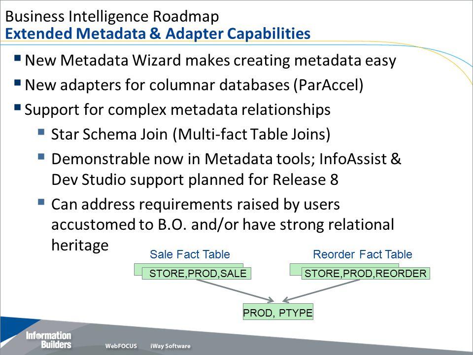 Business Intelligence Roadmap Extended Metadata & Adapter Capabilities