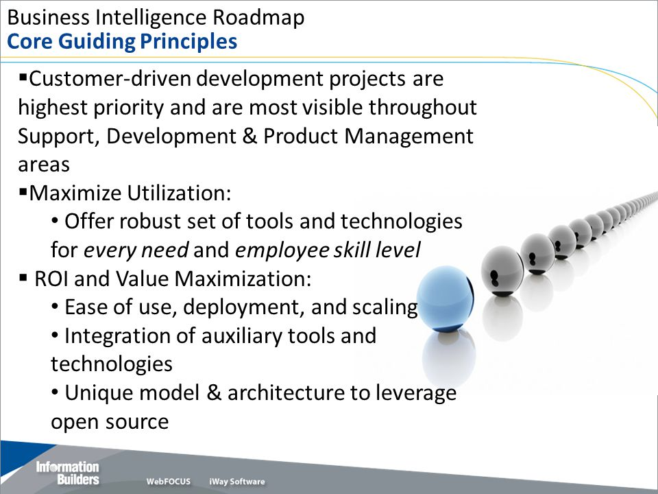 Business Intelligence Roadmap Core Guiding Principles