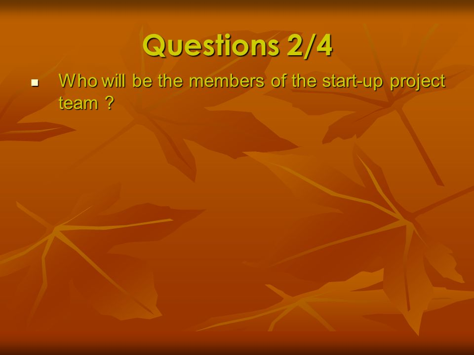Questions 2/4 Who will be the members of the start-up project team