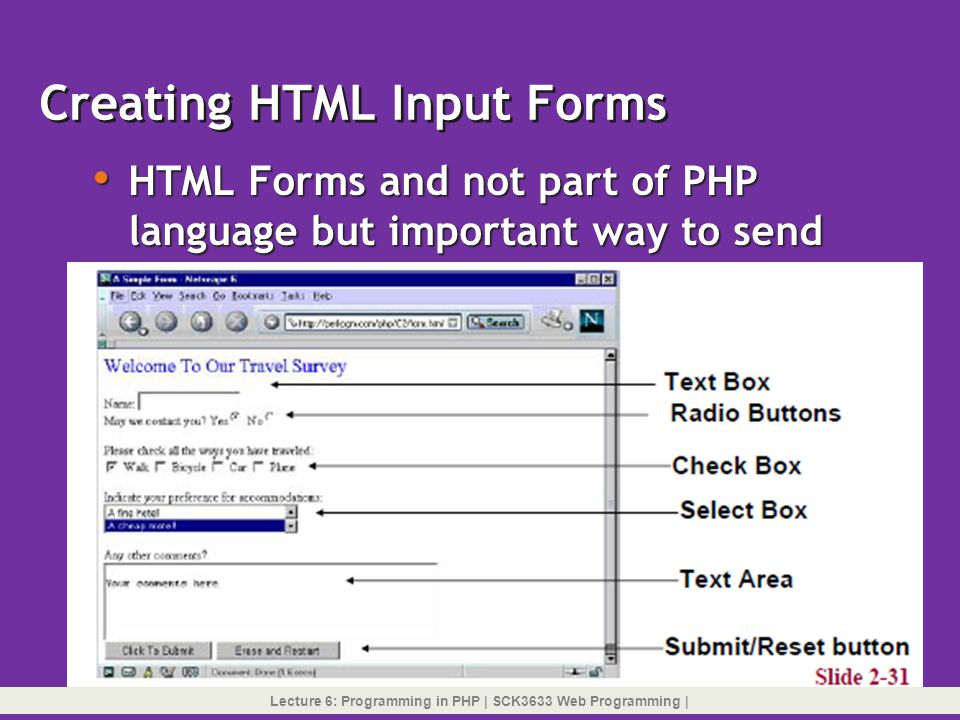 Creating HTML Input Forms