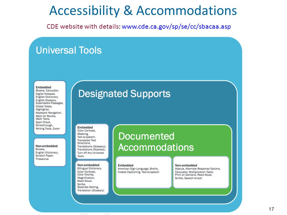 Accessibility & Accommodations