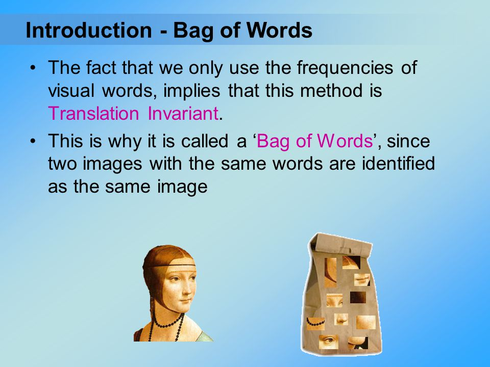 Introduction - Bag of Words