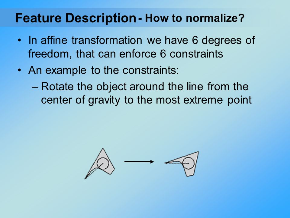 Feature Description - How to normalize