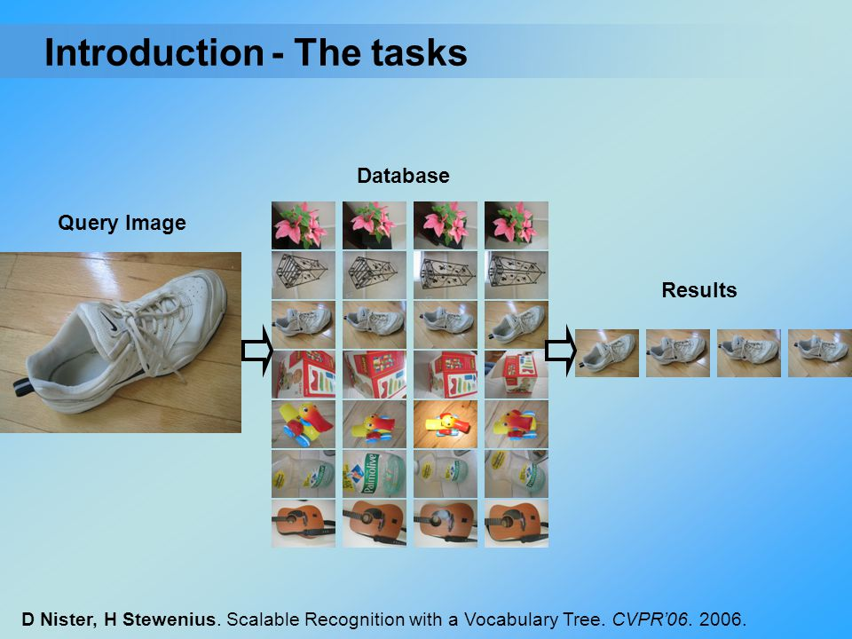 Introduction - The tasks Database Query Image Results