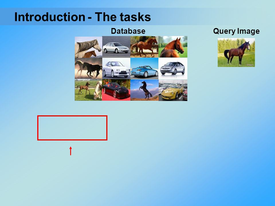 Introduction - The tasks Database Query Image