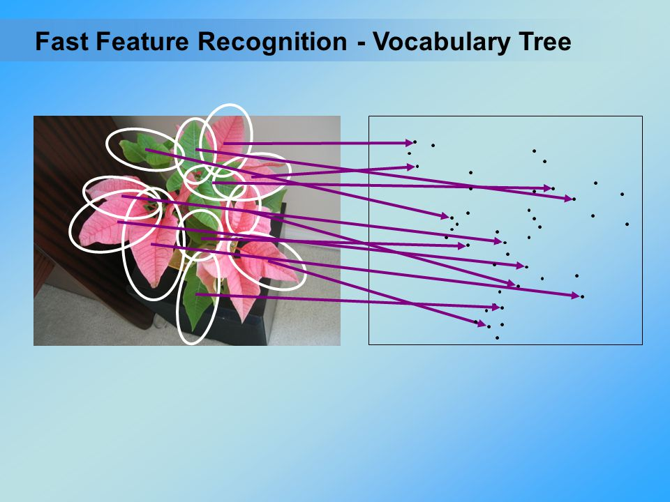 Fast Feature Recognition - Vocabulary Tree