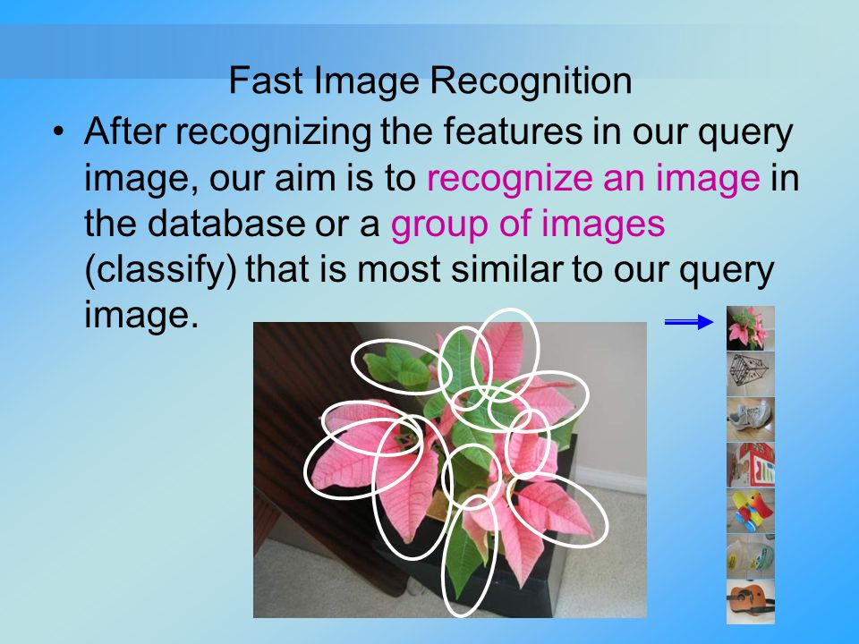 Fast Image Recognition
