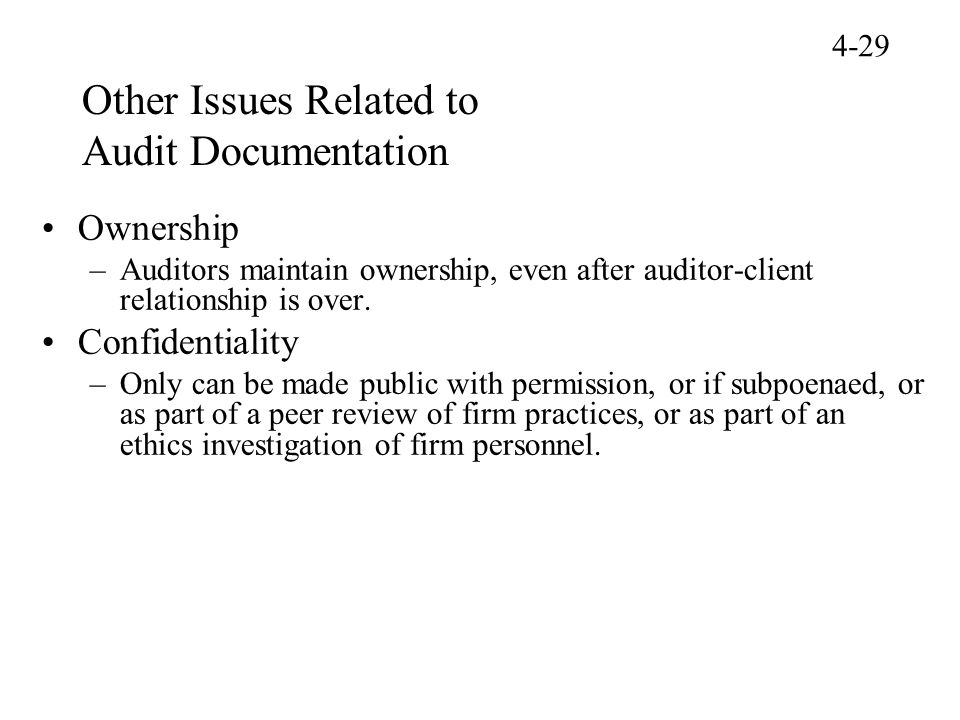 Other Issues Related to Audit Documentation