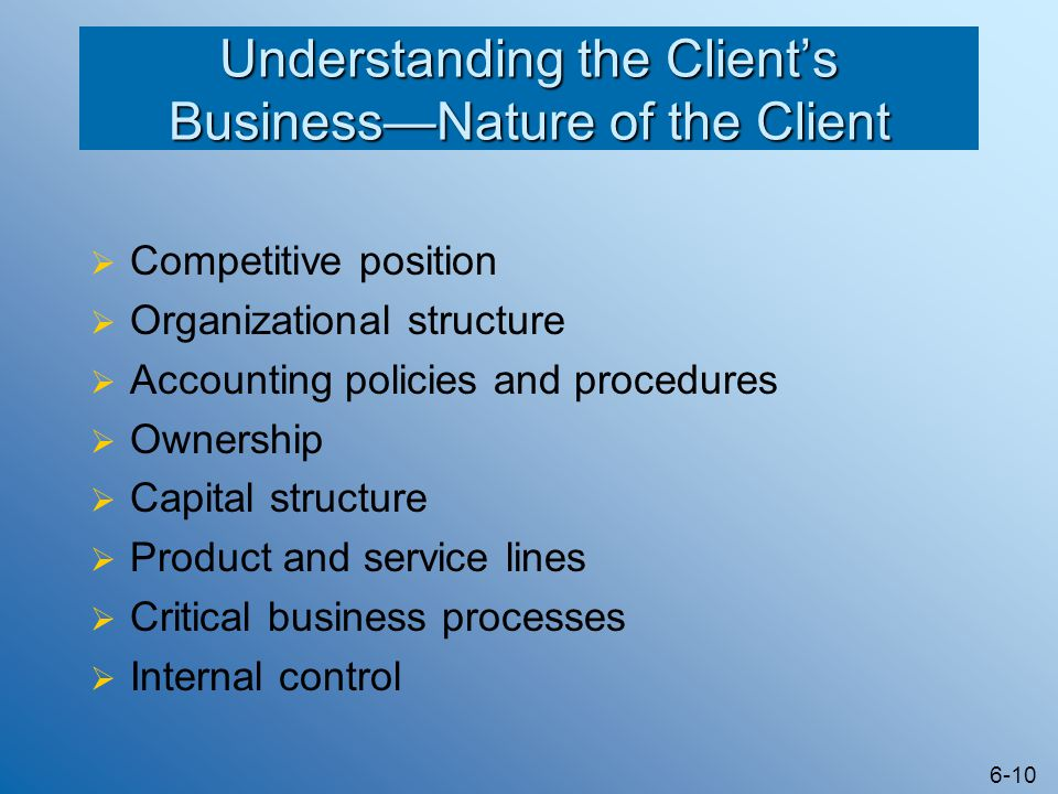 Understanding the Client's Business—Nature of the Client