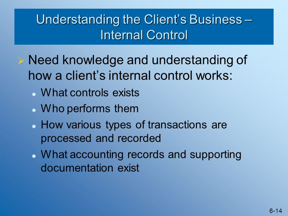 Understanding the Client's Business – Internal Control