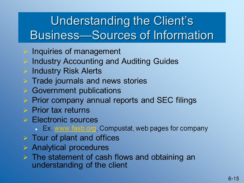Understanding the Client's Business—Sources of Information