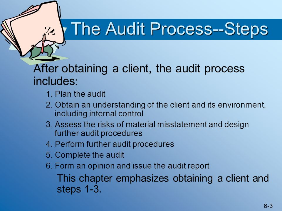 The Audit Process--Steps