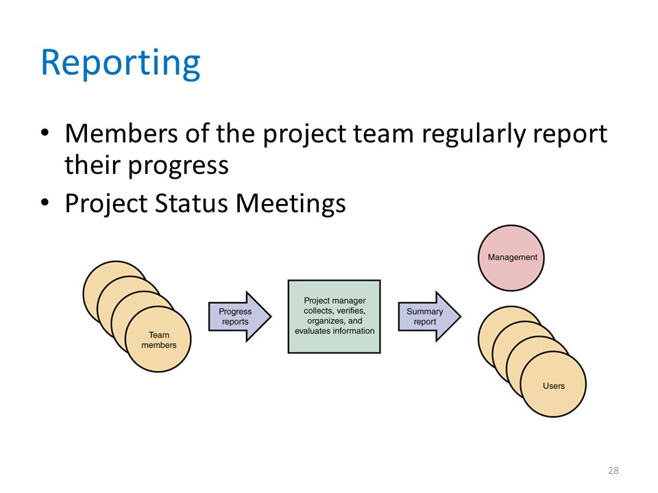 Reporting Members of the project team regularly report their progress