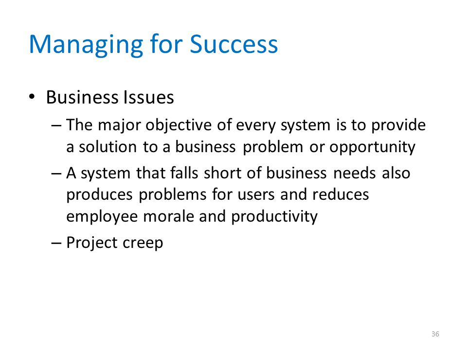 Managing for Success Business Issues