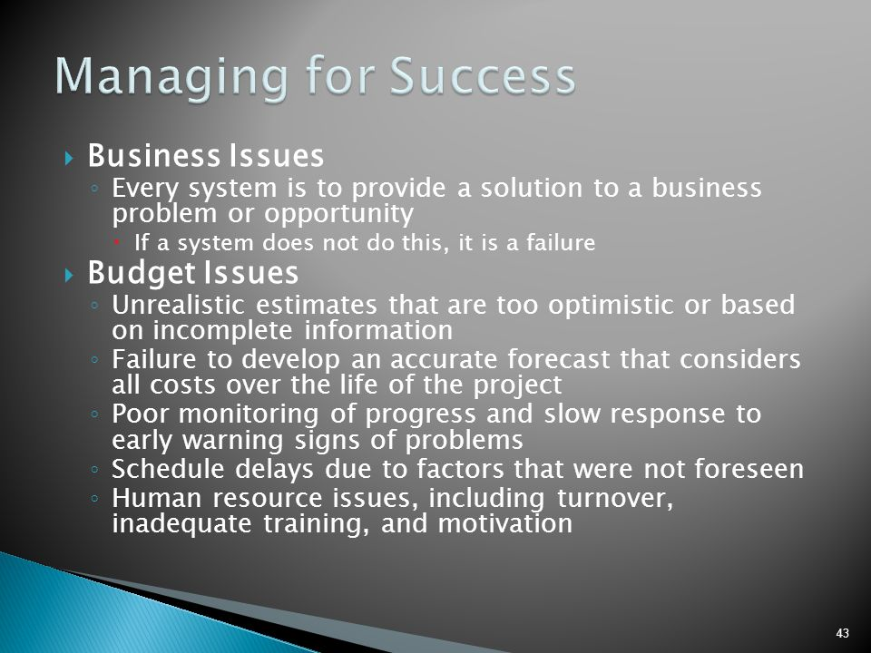 Managing for Success Business Issues Budget Issues