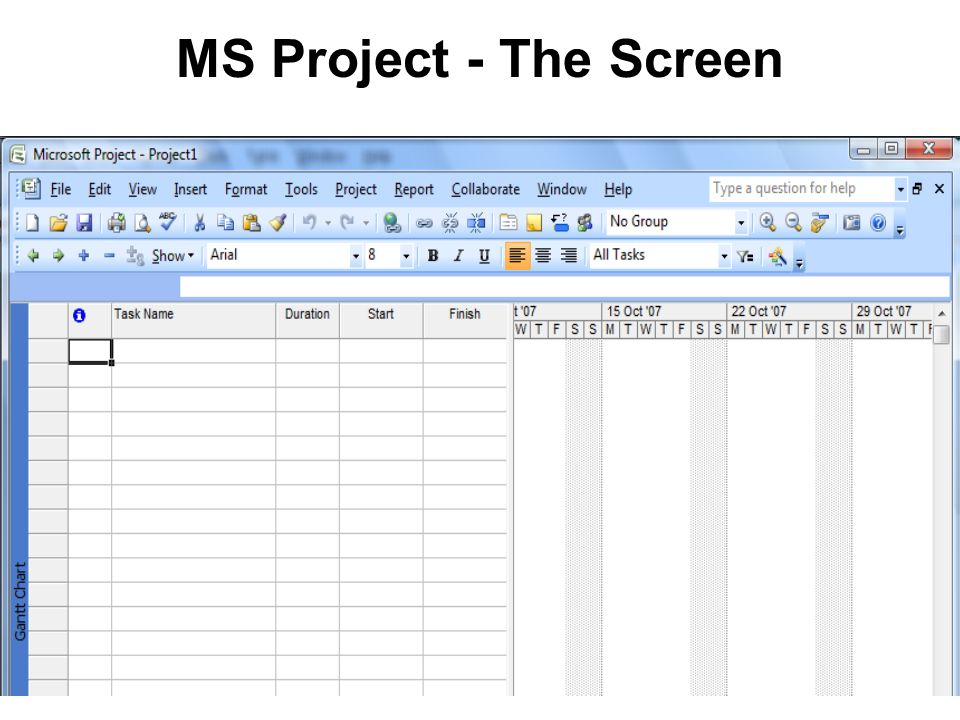 MS Project - The Screen