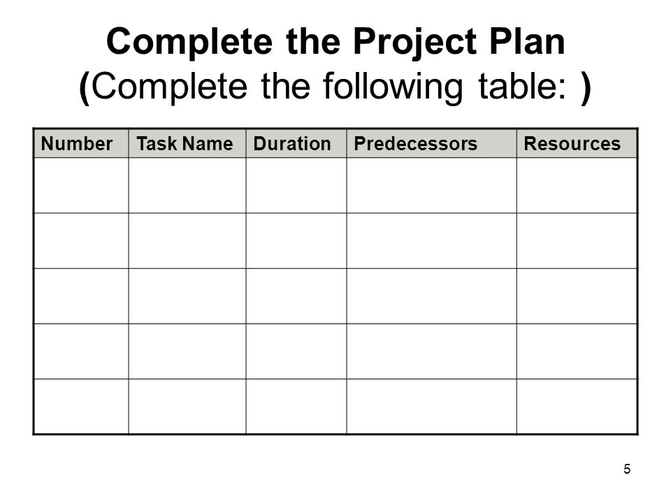 Complete the Project Plan (Complete the following table: )