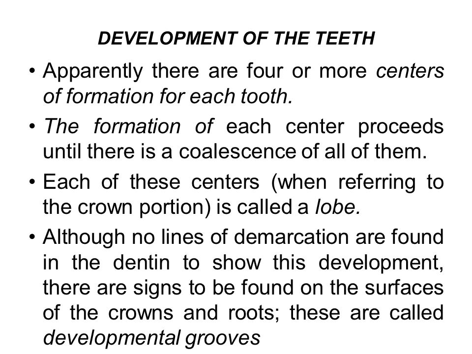 DEVELOPMENT OF THE TEETH