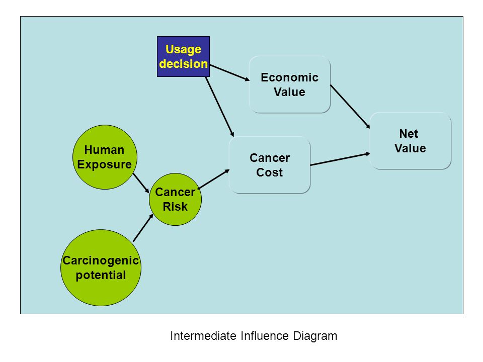Usage decision. Economic. Value. Net. Value. Human. Exposure. Cancer. Cost. Cancer. Risk.