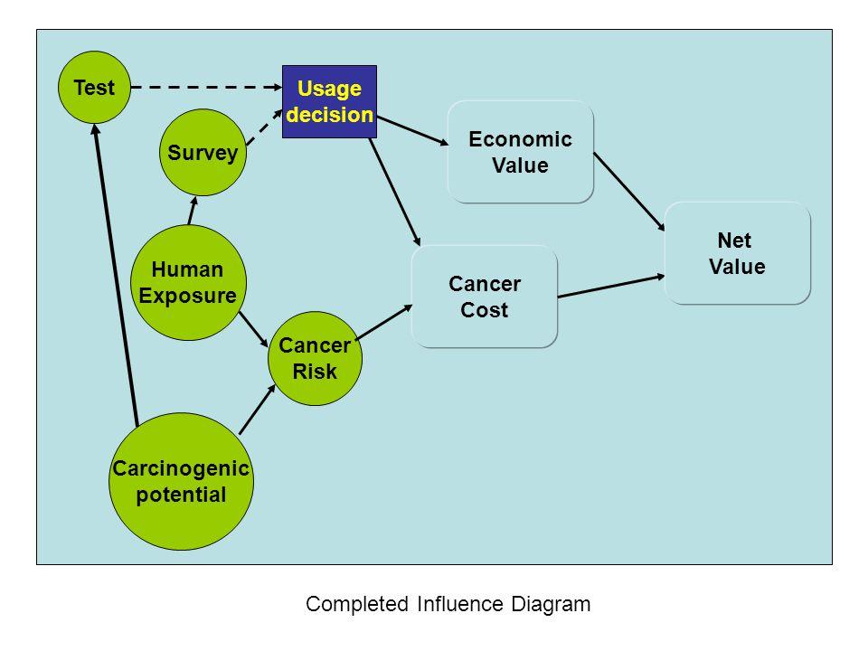 Test Usage. decision. Economic. Value. Survey. Net. Value. Human. Exposure. Cancer. Cost.