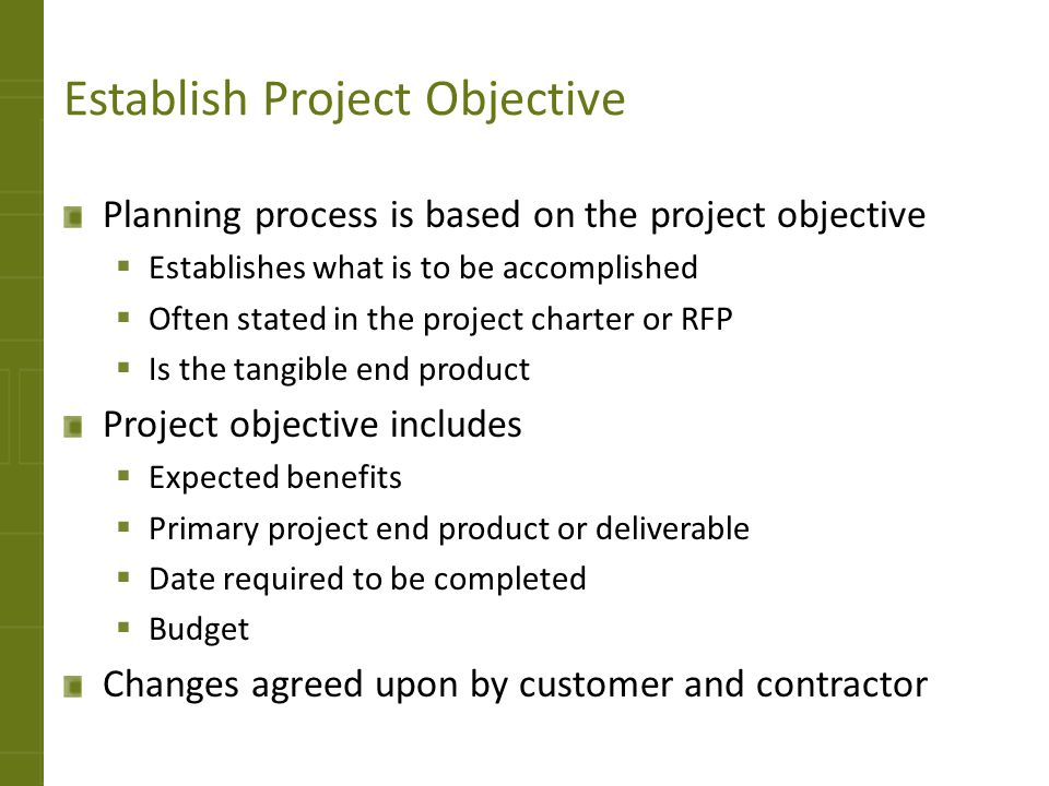 Establish Project Objective