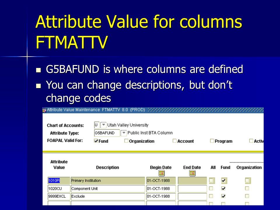 Attribute Value for columns FTMATTV