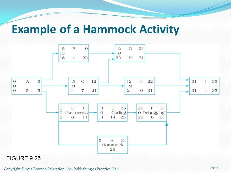 Example of a Hammock Activity
