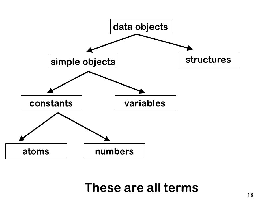 These are all terms data objects structures simple objects constants
