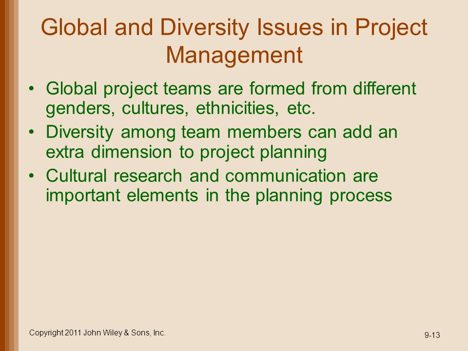 Global and Diversity Issues in Project Management