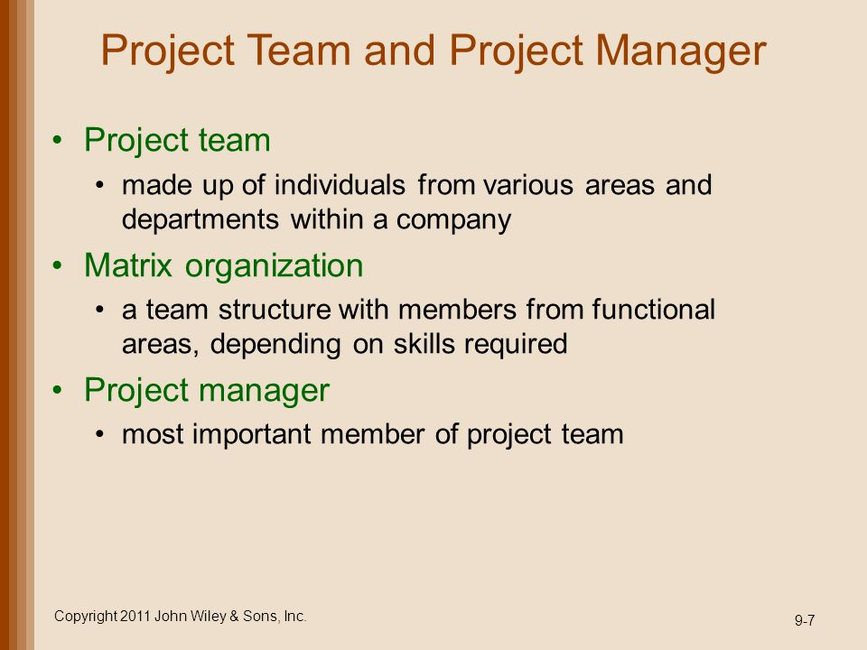 Project Team and Project Manager