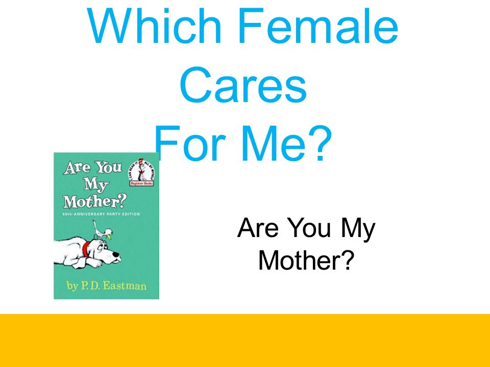 Which Female Cares For Me