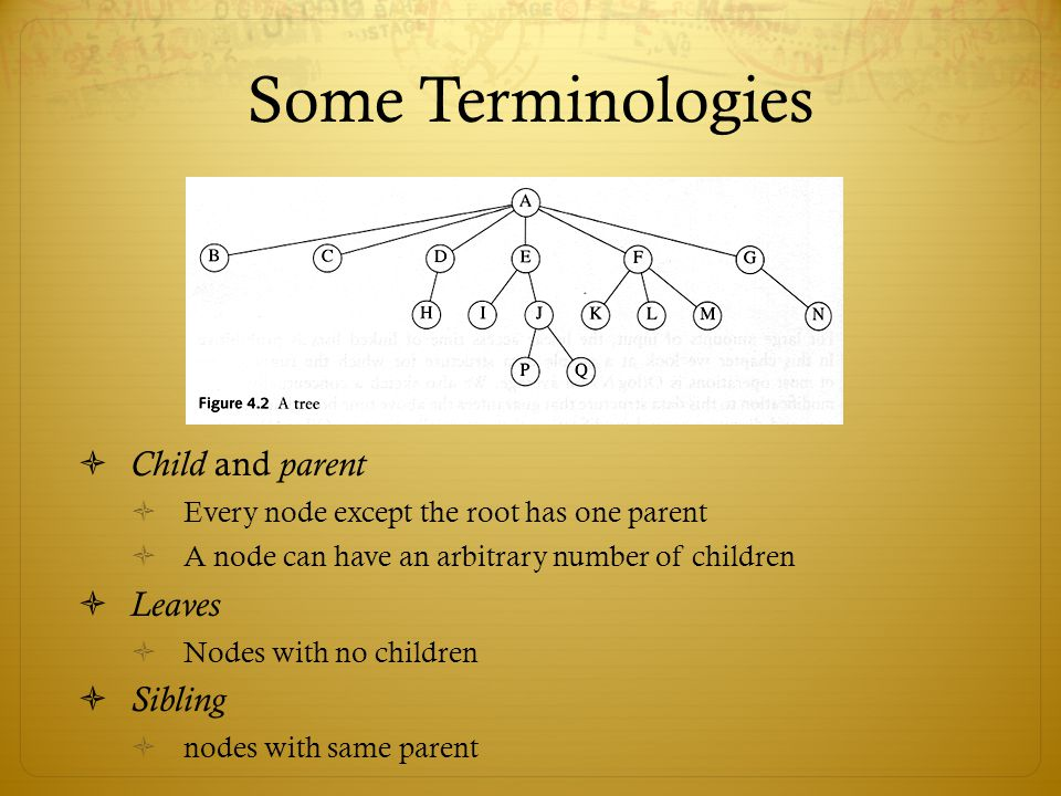 Some Terminologies Child and parent Leaves Sibling