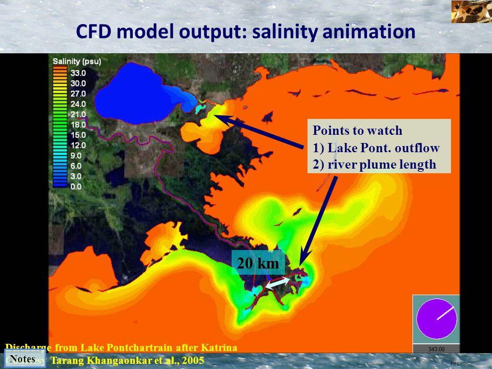 CFD model output: salinity animation