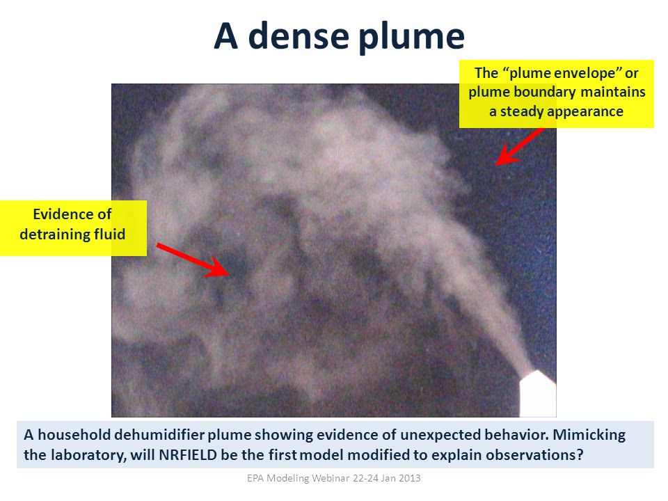 A dense plume Evidence of detraining fluid
