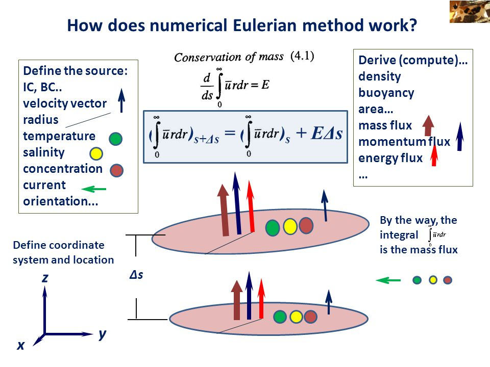 How does numerical Eulerian method work