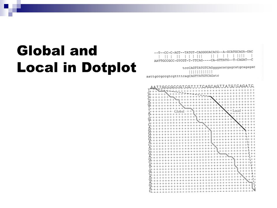 Global and Local in Dotplot
