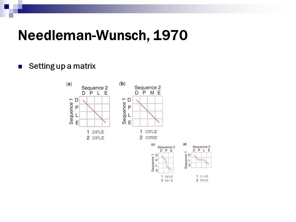 Needleman-Wunsch, 1970 Setting up a matrix