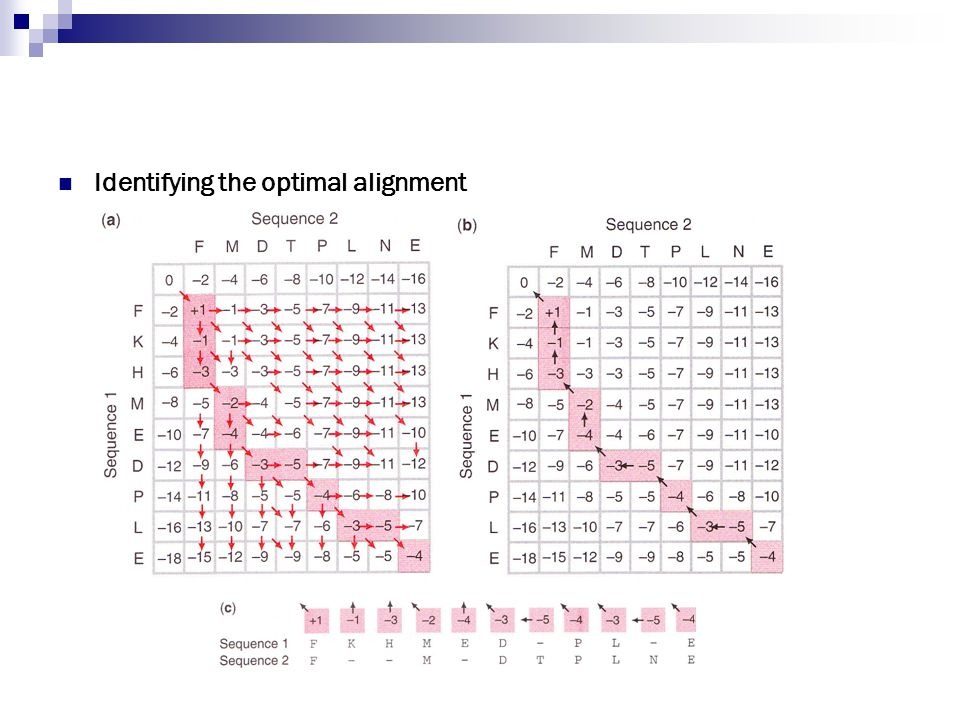Identifying the optimal alignment