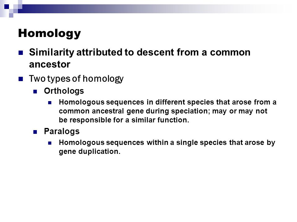 Homology Similarity attributed to descent from a common ancestor