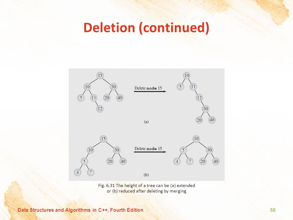 Deletion (continued) Fig. 6.31 The height of a tree can be (a) extended or (b) reduced after deleting by merging