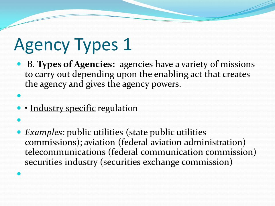 Agency Types 1