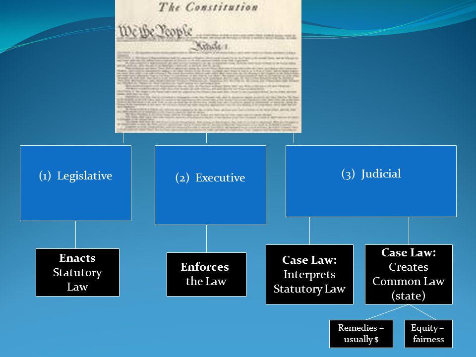 Case Law: Case Law: Enacts