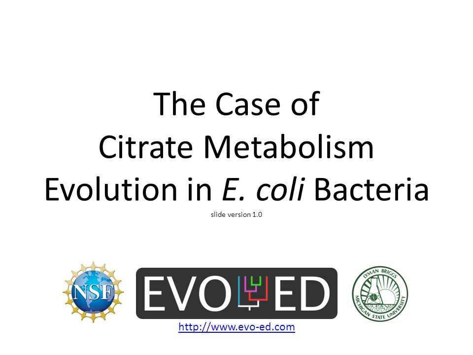 The Case of Citrate Metabolism Evolution in E