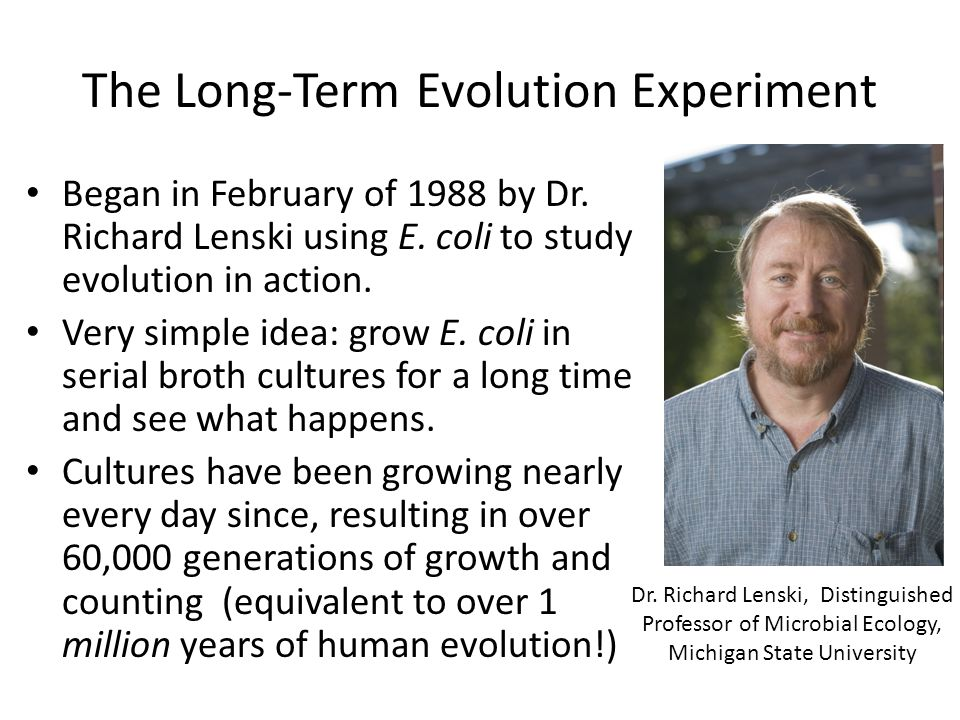 The Long-Term Evolution Experiment