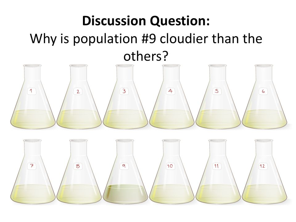 Discussion Question: Why is population #9 cloudier than the others