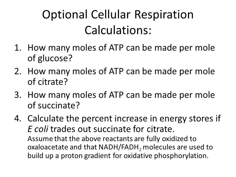 Optional Cellular Respiration Calculations: