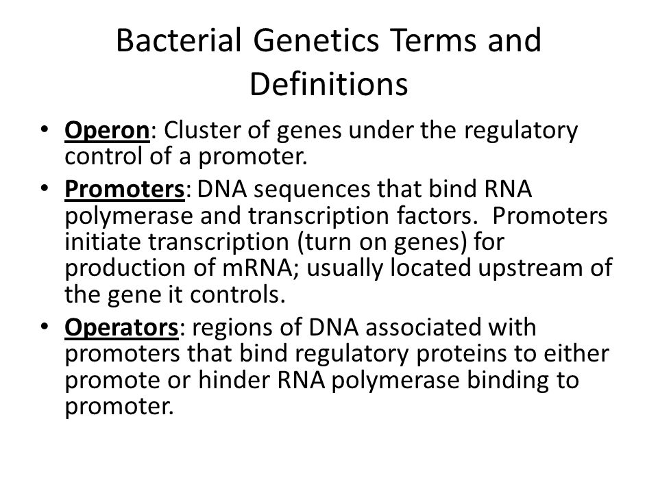 Bacterial Genetics Terms and Definitions